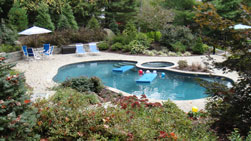Poolscape and backyard oasis